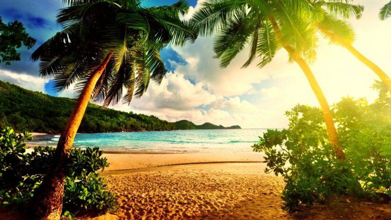 Palm Beach Island Ocean Wallpaper 4k