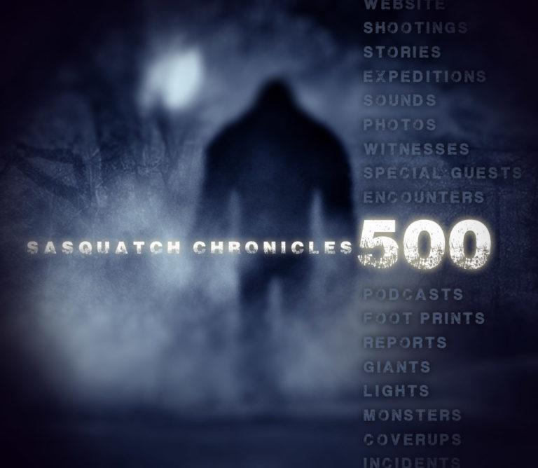 500 sas-chronicles-blue-500-768x668