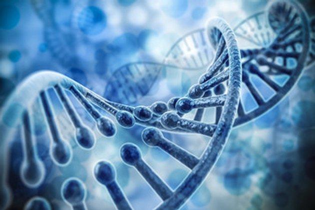 DNA - Transcription Of Light
