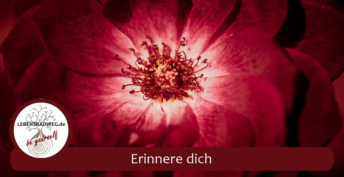Erinnere dich