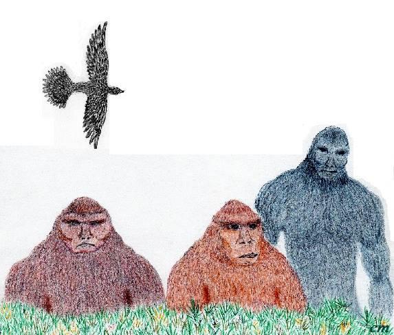 The Sasquatch Benevolent Collective, via LaLuminista